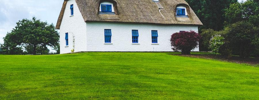 3 tips för den perfekta gräsmattan