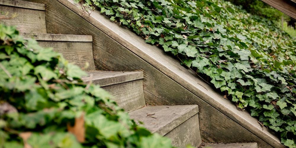 Bästa trappmaskin